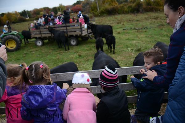 Pre-K Morris Farm Trip 2015