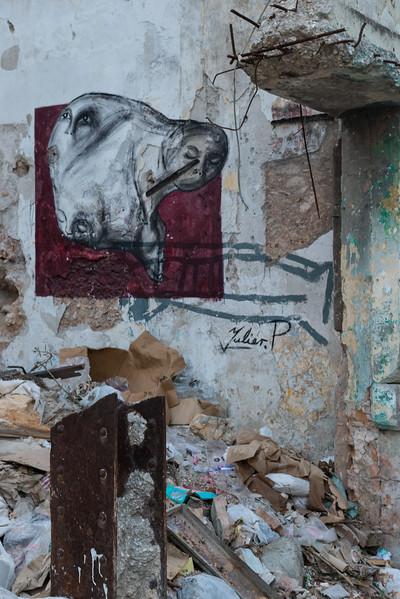 EricLieberman_D800_Cuba__EHL0718.jpg