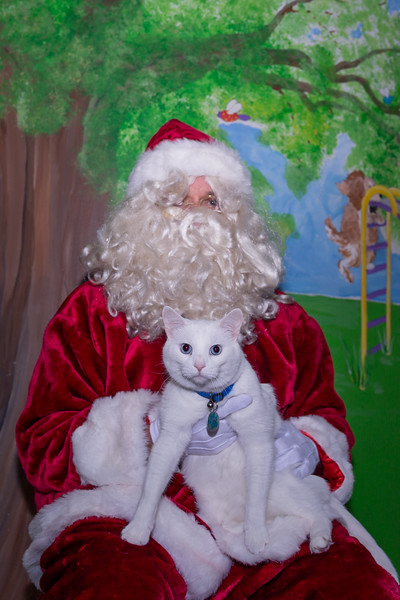 Pet Pictures With Santa-5.jpg