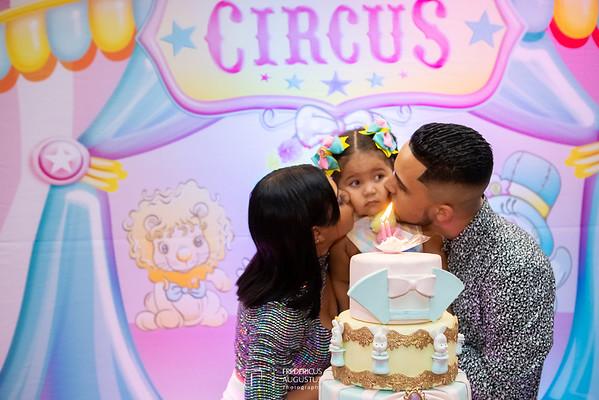 Festa do Circo Rosa para aniversário 2 anos Alice