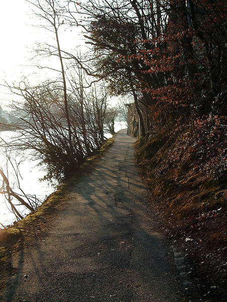 Narrow path in Interlaken
