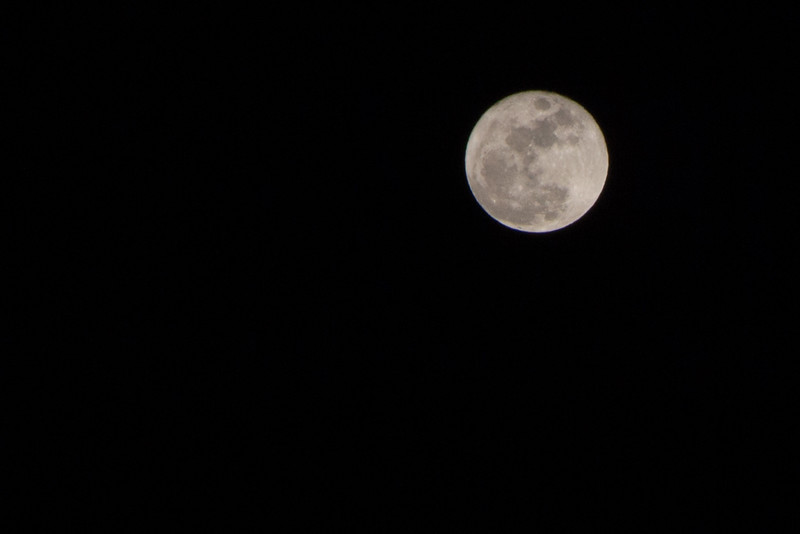 Christmas Night Full Moon