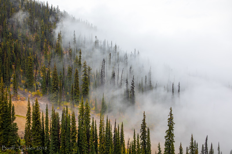 Banff-Golden-20180915-049.jpg
