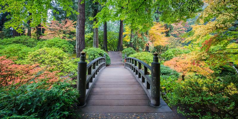 Japanese Garden Oct 2018-627.jpg