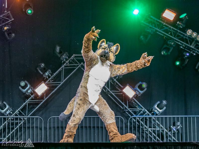 MFF 2018 Dance Comp-1792.jpg
