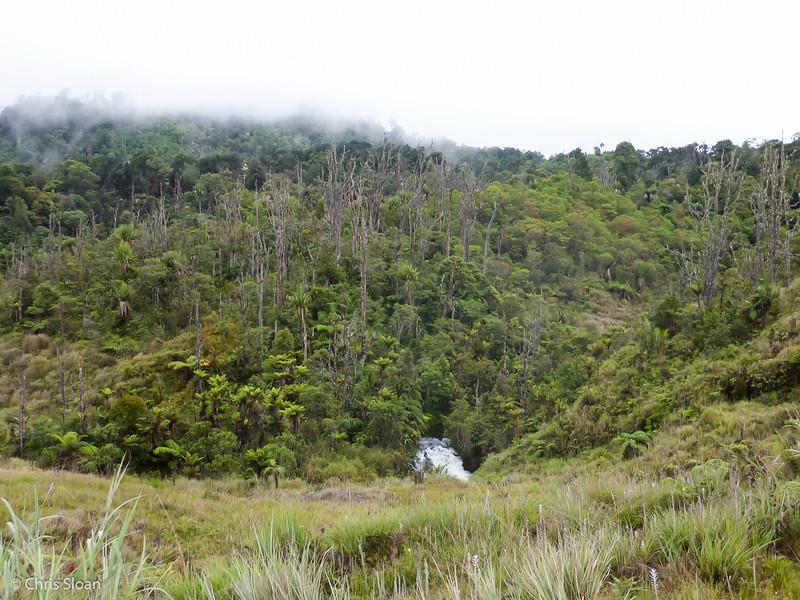 Tari Gap, Papua New Guinea (10-03-2013).jpg