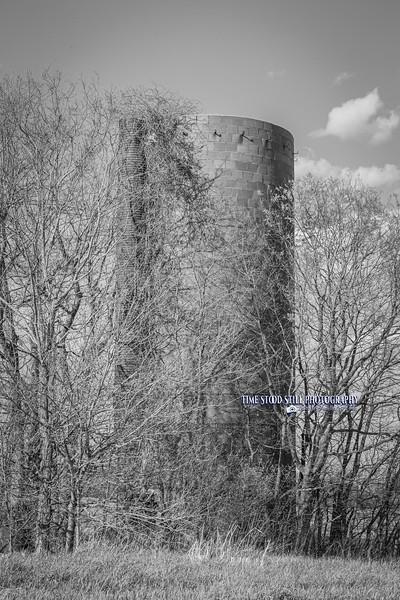KC Landscape-70.jpg