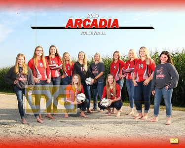 Arcadia volleyball VB19