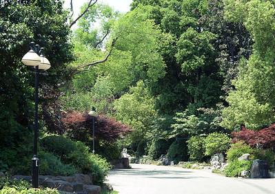 2011 复兴公园