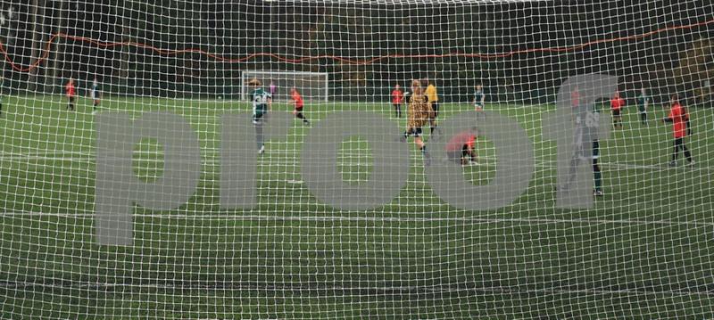 Soccer 6894crop.jpg
