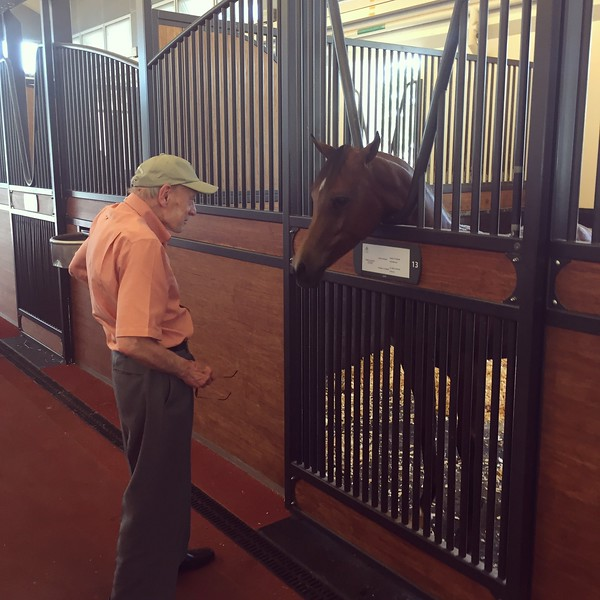 A meeting of the minds at the Doha Racing and Equestrian Club - Bridget St. Clair