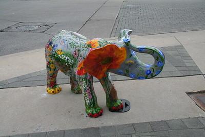 La Grange Elephants 2007