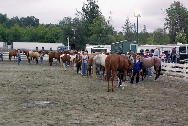 ESF 29-31 August 2008