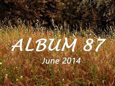 ALBUM 87