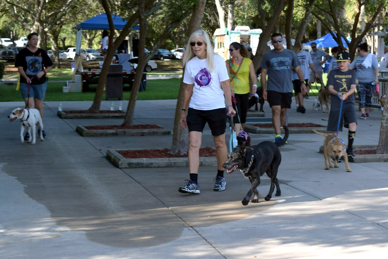 2016 Volusia Co Bark For Life (65).JPG