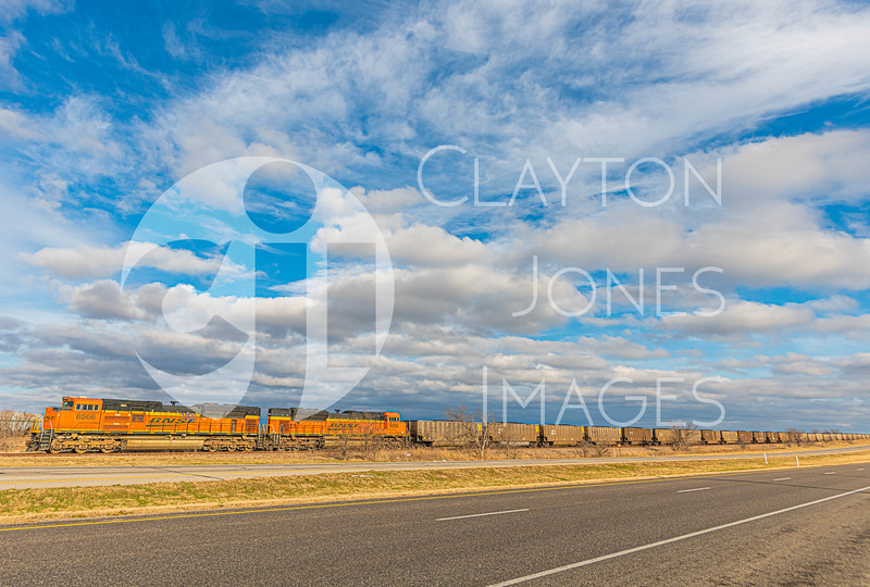 bellevue_287_road_landscape_2.26.2021-10.JPG