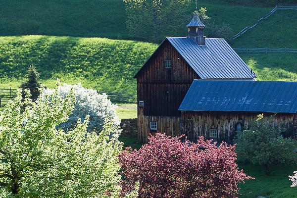 Springtime in Vermont_John Hoffman.jpg