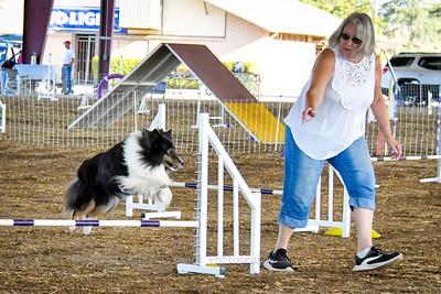 Agility Saturday 9/7/19 Chowchilla Fairgrounds