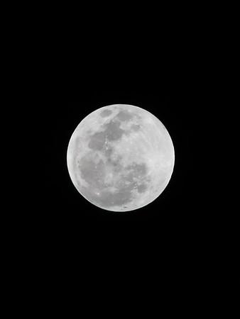 2019-01 Super Blood Wolf Lunar Eclipse