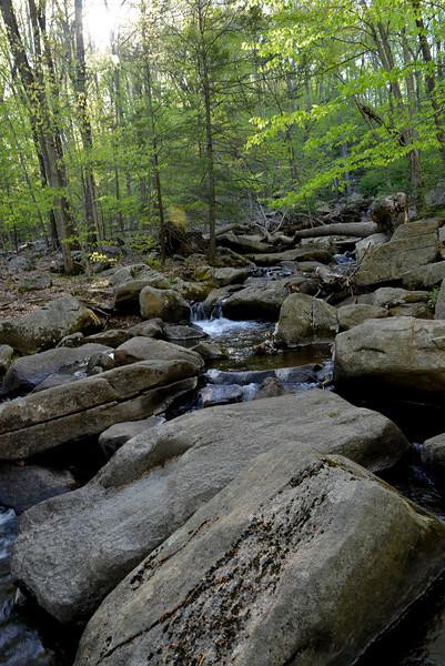 Hacklebarney stream 2.jpg
