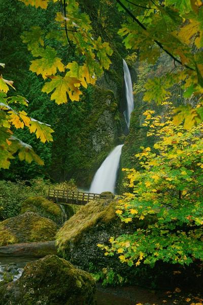 Wahclella Falls framed by leaves 723 raw sf.jpg