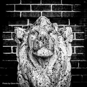 Lion Gargoyles  / Buffalo , NY 07-25-16