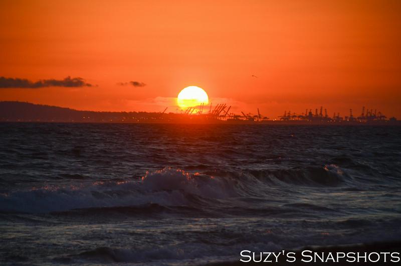 SuzysSnapshots_HuntingtonBeach_July21-38.jpg