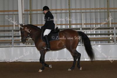 Class #135 HA/AA SHUS Dressage Type Junior Horse