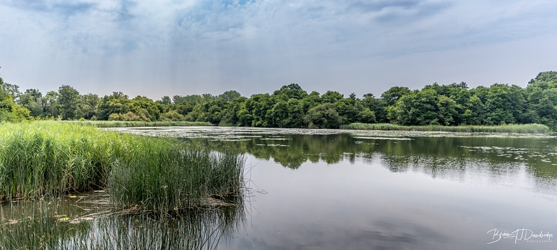 Burton and Chingford Ponds (22 of 24)-Pano.jpg