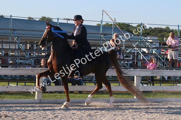 2017 Bourbon County Fair Saddle Horse Show
