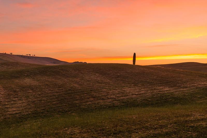 Tuscan Sunset-0171.jpg