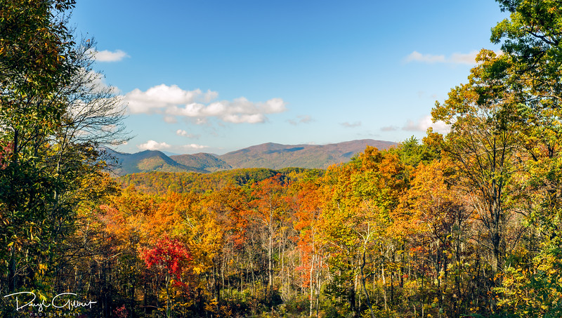 Piney Mountain - Western View - 3 Vertical Photographs