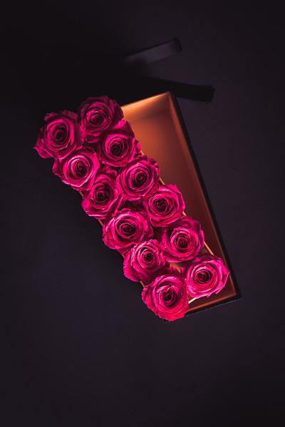 Rose Inspired (2nd Day)--6.jpg