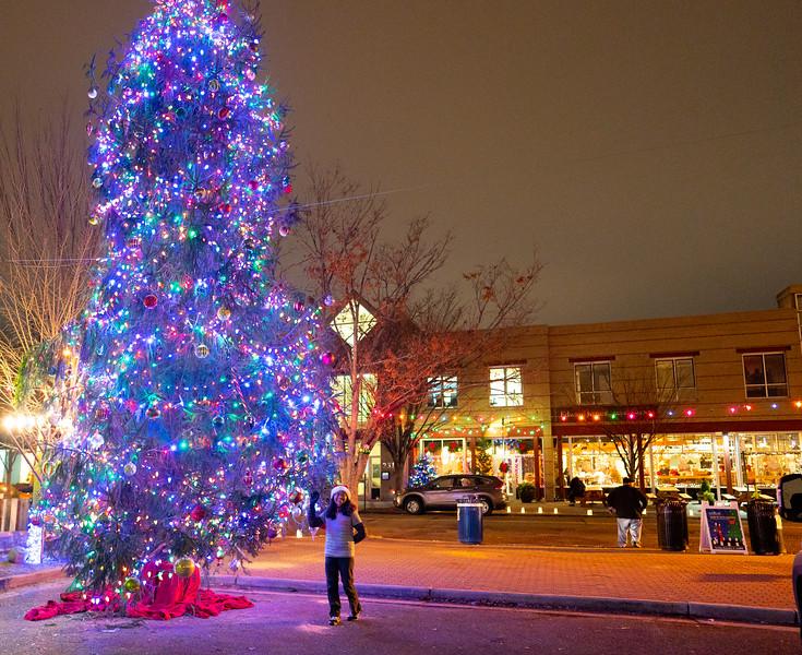Del Ray Christmas 161.jpg