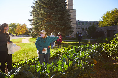 2020 UWL Victory Garden Harvest at Aptiv