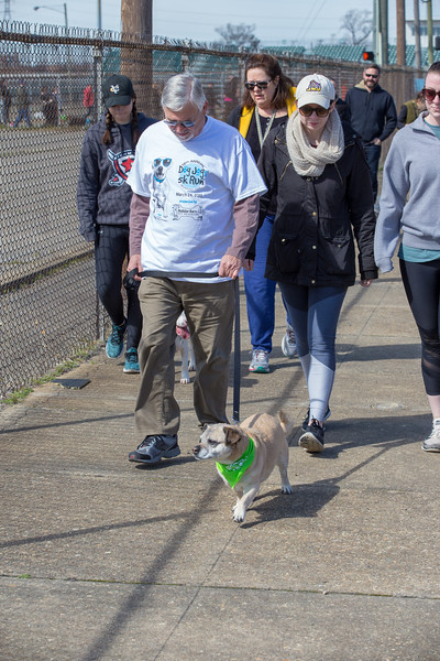 Richmond Spca Dog Jog 2018-770.jpg