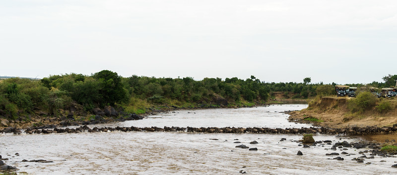 Kenya 2015-05569.jpg