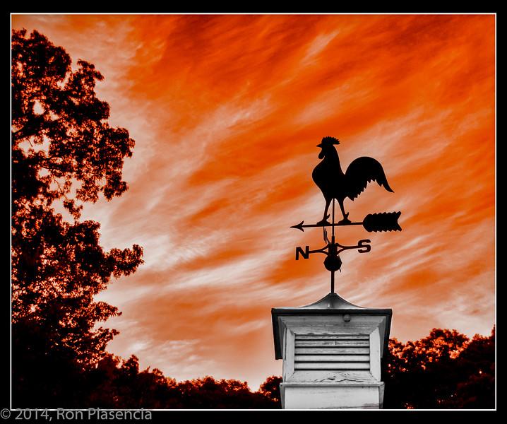 weathervane--2.jpg