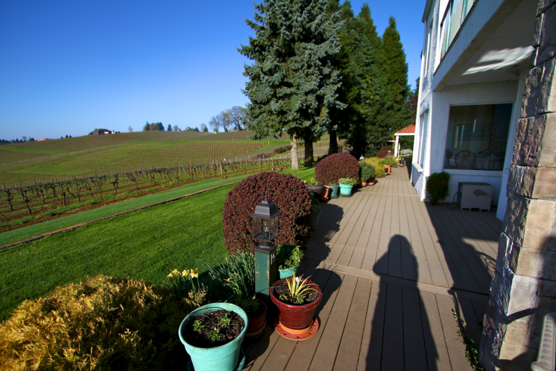 This was about 8:00 AM and the long shadows made for some dramatic photos.  I was using my wide angle lens this day