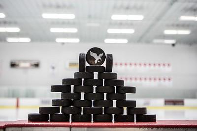 2015-16 Women's Hockey