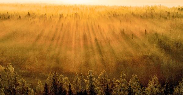 Landscapes-Sax-Zim Bog