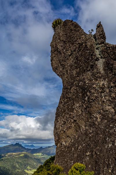 Auf dem «Mount Manaia»