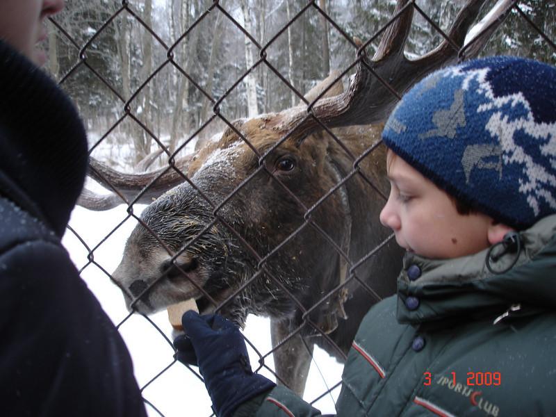 2008-12-31 НГ Кострома 61.JPG