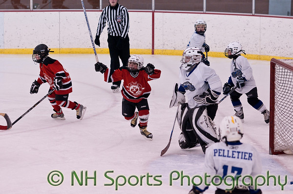 Mite Tier 3 - NH State Tournament