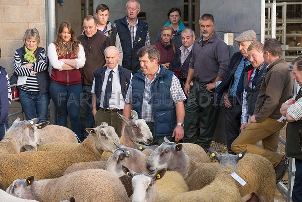 Welshpool Ram Sales Sep 2017