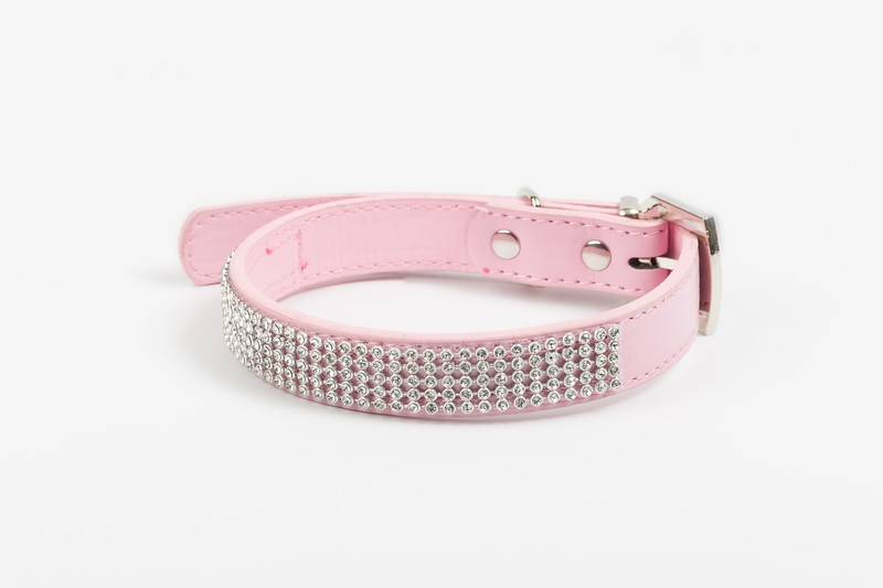 iwoof_designer_dog_accesories_collars_leads_toys_beds_luxury_posh_leather_fabric_tags_charms_treats_puppy_puppies_trends_fashion_bowls-0014.jpg