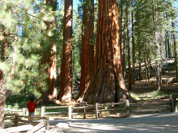 Yosemite  Oct 2014