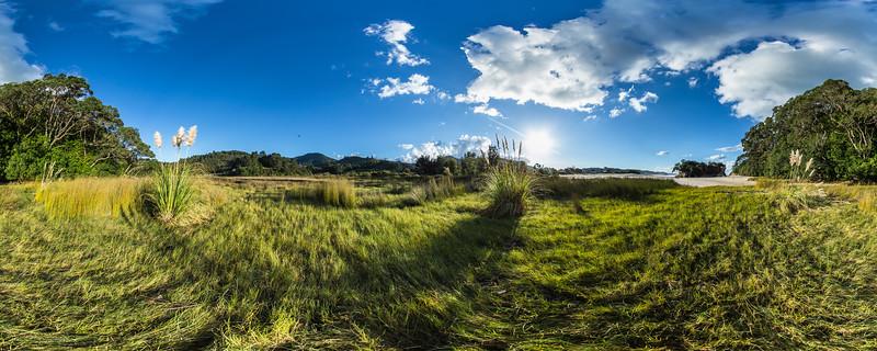 Beautiful Landscape at Whiritoa Beach