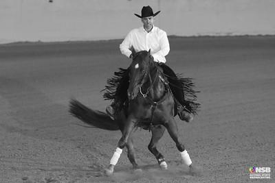 Friday Novice Horse Open Set 1