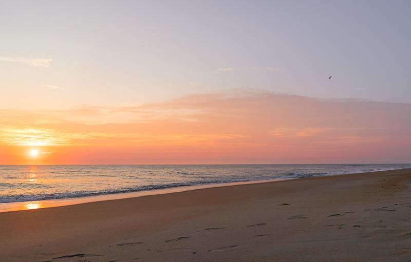 the winds of change.. #beach #coastal #nc #outerbanksofnc #sonya7rii